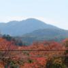 高岳(720.7m)に続いて剣尾山(784m)も登頂断念。いつかはリベンジ登頂を果たしたいものだ。