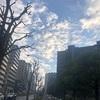 朝の新宿を散歩してきました♪♪