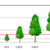 「低木」と「高木」の違いは?~分かりにくい木の種類・分類まとめ