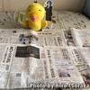 福岡県 北九州地方の新聞流通考察