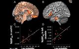 ドラゴン桜2「努力できない脳できる脳」元ネタ論文を読んでみたら割と改変されてた