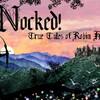 【PC】気になるゲームメモ【Nocked! True Tales of Robin Hood】