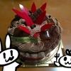 丸ケーキを誕生日やお祝い以外に買うと失礼しましたと言われるの巻