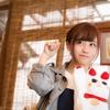 温泉宿で猫がおもてなし「全国自慢の看板猫ランキング」発表