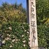 京都 洛北「蓮華寺」