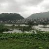県内各地で避難指示が出ています。大雨による増水に注意が必要です。