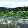 別府市の内成棚田にいってみたら そこには清々しい景色が広がってた