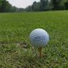 トランプ大統領が行った茂原のゴルフ場は自分も何度か行ったことがあるんです