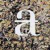 【書評】原田マハ「アノニム」-ジャクソン・ポロック幻の傑作がオークションに。落札からの展開にドキドキ!