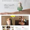 上大岡の京急百貨店で「インコのおとちゃん」展覧会