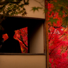 【フォト旅・京都】〜絶景!!!僕がみてきた今年の紅葉〜