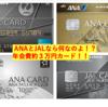最新版!!個人的に思う年会費約3万円のカード③『ANAとJAL』