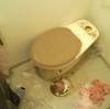 長沼町 排水つまり修理 トイレ便器内異物除去作業