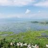 【世界一周#24】日本人学校で出会った仲間たちとロクタウ湖へ!