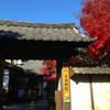紅葉輝く秋の法金剛院