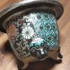 珍しいプラチナ鉢・・・。