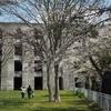 2021桜めぐり 八重桜が咲き出した 笹流ダム。