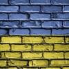 プライド・パレード妨害の極右活動家50人以上を逮捕 ウクライナ・キエフ