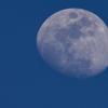 初めて月を大きめに撮りました。