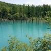 北海道 美瑛町 青い池 / 進化し過ぎ