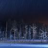 ライトアップ期間中の美瑛青い池に行ってきた!夏景色も良いけど、冬景色も格別!