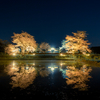 【天体写真】 小湊鉄道 飯給駅の夜桜と星景