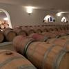 バスク地方とボルドーの旅 その5 ボルドーワインツアー・メドック