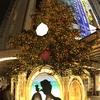 都内・横浜の素適クリスマスツリー【2016年】