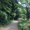 横濱の森を駆ける【2017/06/11トレラン】