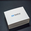 Sennheiser MOMENTUMWireless M2 AEBTのイヤーパッド交換
