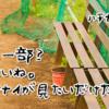 アニメハチナイ感想#8