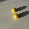 ソーラーシェアリング:千葉エコの設備で大豆が(少しだけ)採れました - 千葉の在来種「コイトザイライ」