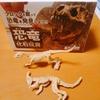 ダイソーの恐竜化石玩具は大人も子供も楽しめる!