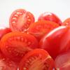 トマトに砂糖!意外と美味しかったよ🍅