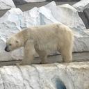 動物園&水族館に行こう!!