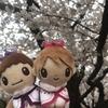 きしいわと桜とLove-tune