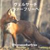【VICTORY!!!】 ヴェルサーチ、フルラがリアルファー廃止を発表!