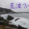 軍ヶ浦漁港でエギング ~悪天候のなかでのド根性釣行~