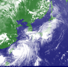 台風5号「ダナス」が近付いてるってよ