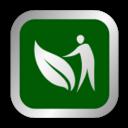 素人が塊根植物を種子から栽培する日記