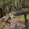 独り遊山「奥物部の森」 森の道