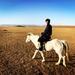 2-4. 念願のゲルキャンプ。大草原をゼルダ気分で馬と駆け抜ける。