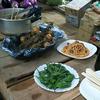 千葉県での農業体験