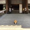 足利氏館/鑁阿寺(栃木県足利市)さんぽレポート【おまけ編】/日本100名城