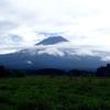 静岡県 糞虫採集 ダイコクコガネ