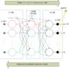ニューラルネットワーク / ディープラーニング