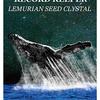 精霊動物 クジラについて