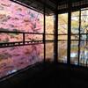 京都① インスタ映えの瑠璃光院