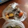 ラオスでまたよく分からん果物を食べました