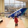 成田  新鮮野菜から飛行機のタイヤ、座席まで購入できる、空の駅さくら館